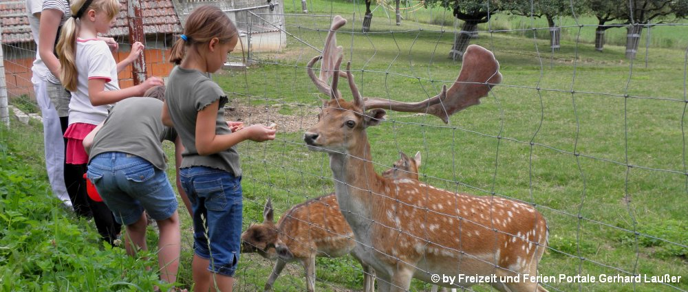 Familienurlaub günstig in Bayern Kinder Bauernhof Bayerischer Wald
